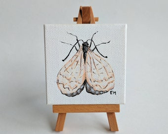 Delicate Lace Moth Painting - Original Mini Painting - Acrylic on canvas - 3x3 in.