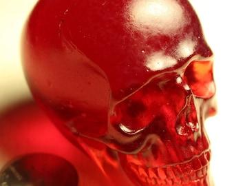 1/3 Resin Skull Cast (Blood Red)