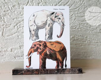 Different giants - A6 postcard / Elephant illustration