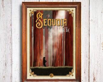 Sequoia poster, Sequoia National Park, California woods , Sequoia trees, Sequoia art print, Sequoia trees poster, sequoia black bear
