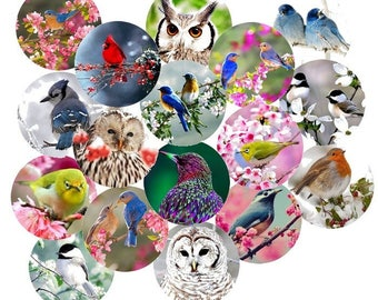 "Digital images x 20 printable ""birds"" 30mm"
