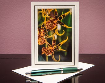 Orchids No.6-Greeting cards-Note Cards-Flower-Nature-Happy Birthday-Family-Love-Photo Card-Floral-Wedding-Celebration-Congratulation-Gift