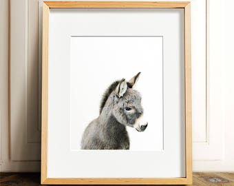Donkey art, PRINTABLE art, Donkey print, Nursery decor, Animal art, Baby animal prints, Nursery wall art, Farm animal prints, Nursery art