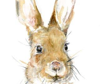 Bunny Portrait