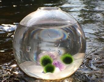 Amethyst & Genuine Sea Glass Marimo Moss Ball Aquarium