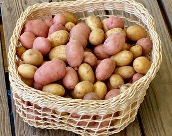 Potato and/or onion basket