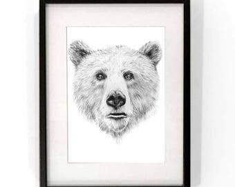 Baloo - Bear Print - Wall art - Limited Edition Print of 200 - Black/White - Bear drawing