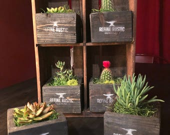 Succulent Planter,Wood Planter,Wood Box,Rustic,Planter,Rustic Planter,Modern,Cactus,Arizona,Reclaimed Wood Planter,Garden Planter,Box