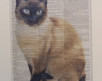 Siamese Cat Print No.510, siamese cat prints, siamese cat posters, siamese cat gifts, cat poster, cat wall decor, dictionary print,