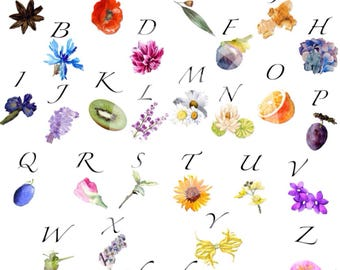 Alphabet letters of the alphabet in the colors of spring.