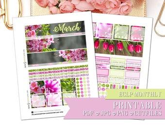 PRINTABLE MONTHLY KIT: March New Beginnings/Erin Condren/Printable/Digital/Monthly Kit