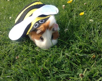 Guinea pig costume- bumble bee costume for small pet. Cute unique handmade. Guinea pig costume accessories clothing
