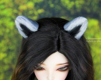 Raccoon set (magnetic ears & tail) for MSD, 1/4 bjd dolls