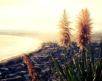 Misty Mauao - Digital Photography, Nature, Nature Photo, Nature Photography, Landscape, Landscape Photography, Beach Photo, Beach Image