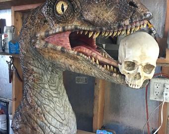 Velociraptor display, Full size