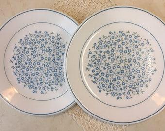 Corelle Blue Heather Dinner Plates