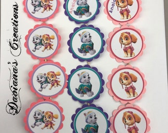Paw patrol Skye and Everest cupcake toppers Special order