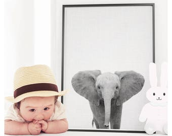 Baby Elephant Print, Elephant Wall Art, Safari Animal, Safari Animal Print, Nursery Decor, Nursery Print, Nursery Printable, Printable Art