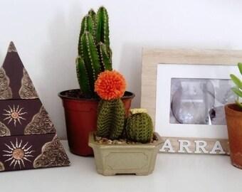 Composition de cactus au crochet dans un pot en céramique gris/vert