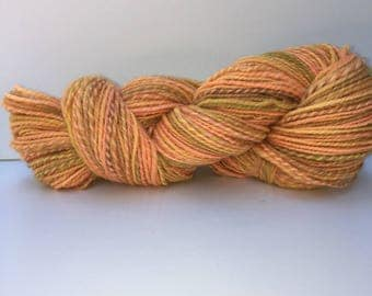 Handspun corriedale wool yarn. Worsted weight. Weighs appx 4.0oz and appx 236 yards. #B1