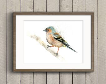 Fine Art Print of My Original Chaffinch Watercolour Painting Signed A3 A4 New Giclee High Quality Impressionist Wildlife Animal Garden Bird