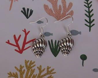 Earrings shells silver