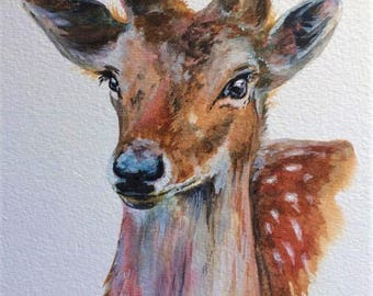"Doe 12"" x 10"" Original watercolour painting"