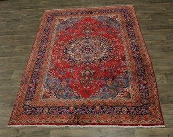Fantastic Traditional Design Plush Sabzevar Persian Rug Oriental Area Carpet 6X9