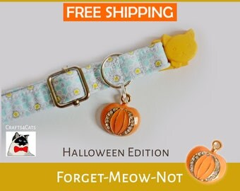 Halloween kitten collar 'Forget-Meow-Not' with pumpkin charm - Halloween cat collar - cat collar with bell