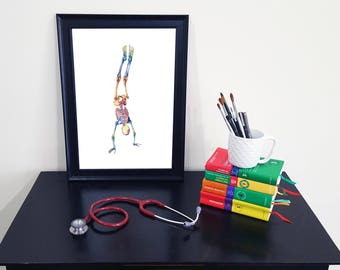 Medical Anatomy Art- Stunning Watercolour Skeleton Handstand PRINT