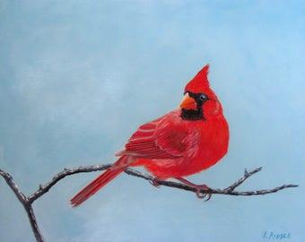 Cardinal male oil original bird painting on artist panel 8x10