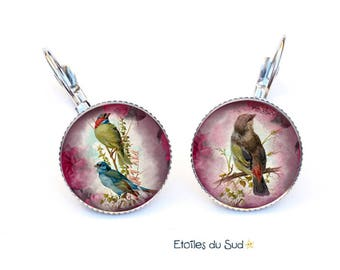 Colorful birds, vintage, resin cabochon earrings