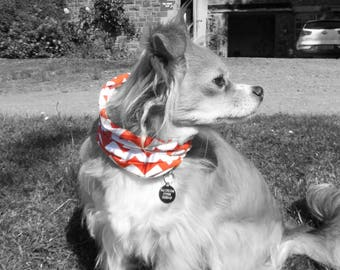 Scandana dog scarf bandana funky designer dog accessory snood Scan004