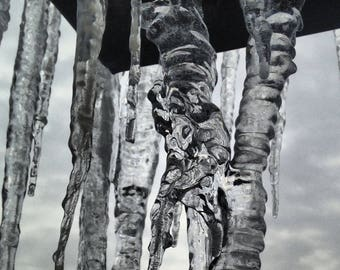 Icicle - Winter Photography - Nature Photograph - Ice - Indianapolis