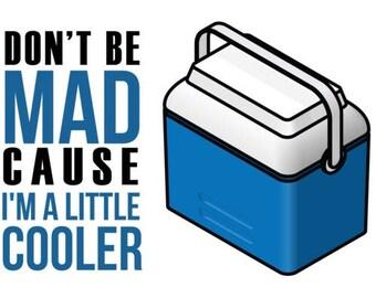 Don't Be Mad Cause I'm A Little Cooler Shirt - Pun Shirt