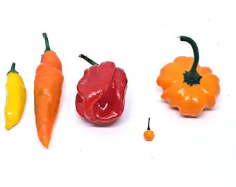 Aji pepper seed collection: (10) aji limon (10) aji amarillo (10) aji chombo (10) aji charapita (10) aji starfish. Wonderful -Flavorful- Hot