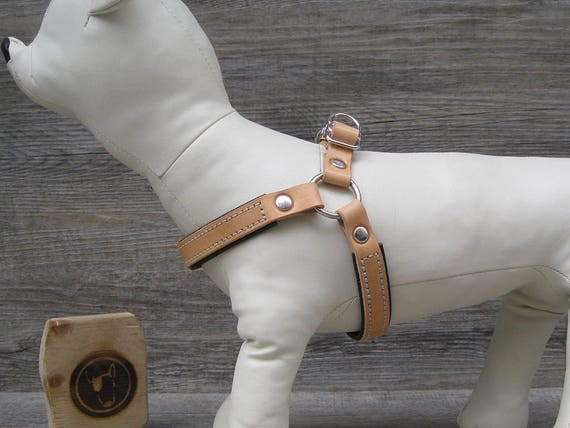 Step In Dog Harness in Tan Leather, Soft Padded Dog Harness, Adjustable Dog Harness for Small and Medium Dogs, Handmade No Pull Dog Harness