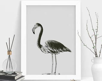 Flamingo Wall Art, Wall Decor, Nursery Gift, Printable Art, Large Wall Art, Flamingo Art Print, Wall Hanging, Flamingo Decor, Animal Decor