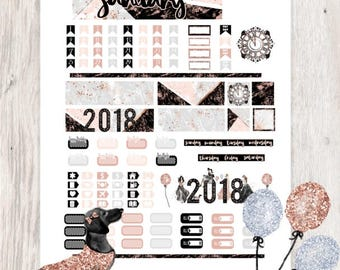 January Printable Planner Stickers/Pocket Travelers Notebook/Monthly Kit/Annie Plans Printable/Winter January Glam New Years Midnight Marble