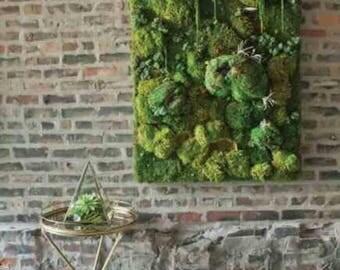 Moss wall art beautiful preserved moss art no maintainence