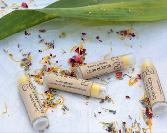 Natural cocoa and shea butter lip balm