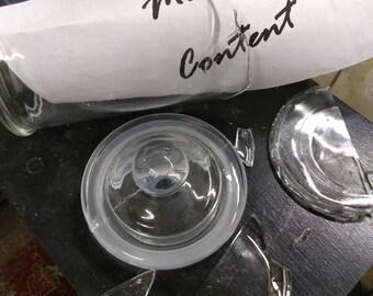 Wet Specimen - Ball Python