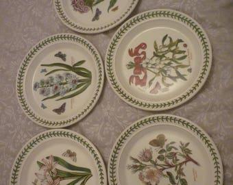 Portmeirion botanic garden plate set