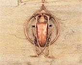 Electroformed  Beetle Copper Necklace N27