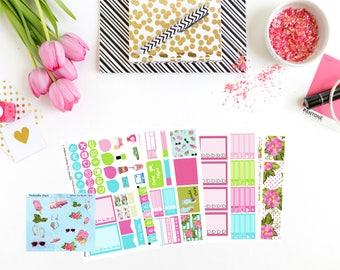 Summer Fun Big Kit, planner stickers