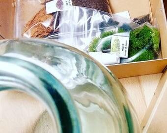 Terrarium etsy fr - Kit terrarium plante ...