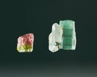 Pair of Tourmaline Crystals, 22.85 cts in total (NF1344)