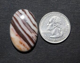 Natural Zebra jasper cabochon loose gemstone top quality handmade Amazing smooth polish Oval shape one side flat 43cts (32x21x5.5)mm