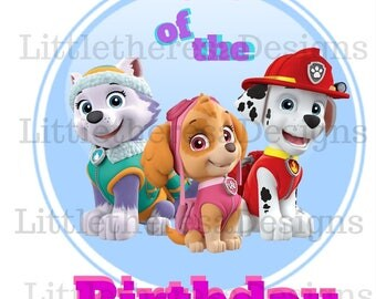 Paw Patrol Dad Of The Birthday Girl Iron On Transfer