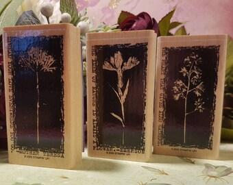 Stampin Up Floral Retired Stamp Set
